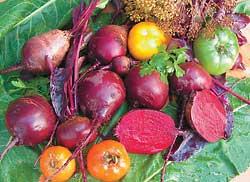 Свекла и другие овощи