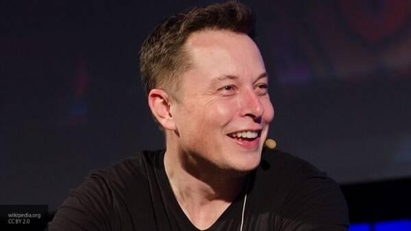 Илон Маск назвал шаурму своим любимым блюдом