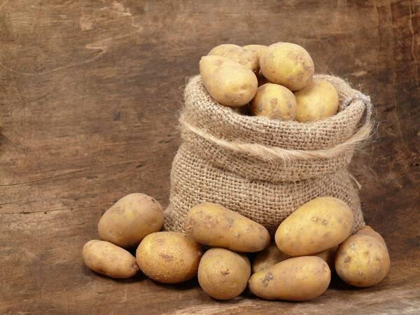 250 лет назад в России появилось слово «картофель»