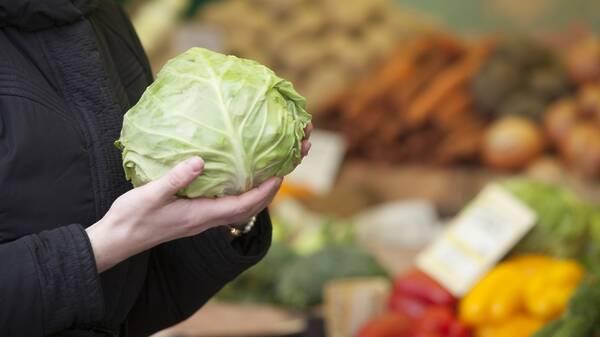 В России отпраздновали День безопасности пищевых продуктов