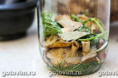 рецепт волнушек соленых