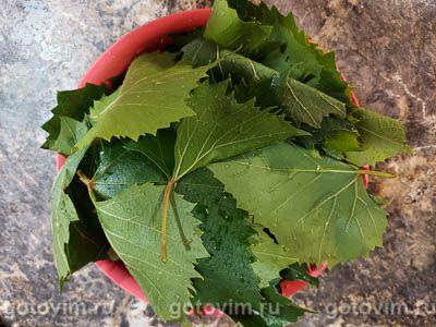 Маринованные виноградные листья на зиму, Шаг 01