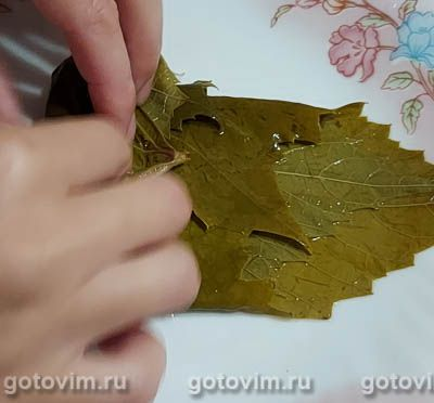 Маринованные виноградные листья на зиму, Шаг 04