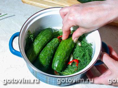http://www.gotovim.ru/pics/sbs/msologur/03.jpg