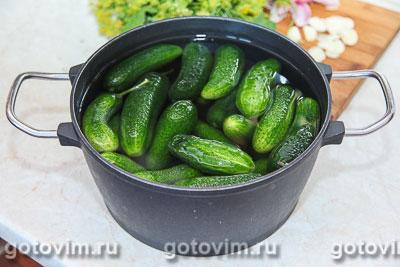 Малосольные огурцы с листьями черной смородины, Шаг 02