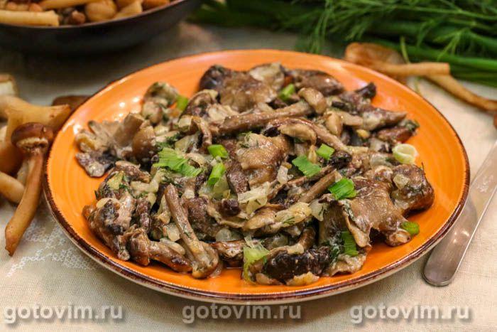 Жареные опята с луком на сковороде — Итальянская кухня ?