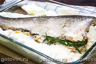 рыба толстолобик морская или речная