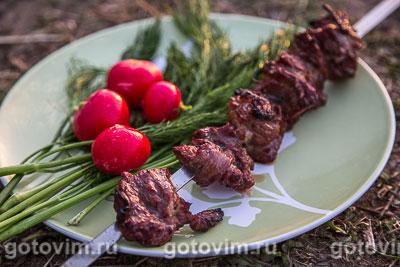 Шашлык из говядины. Фотография рецепта
