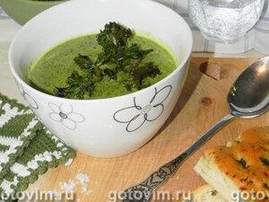 Сливочный суп из кудрявой капусты с зелёными чипсами
