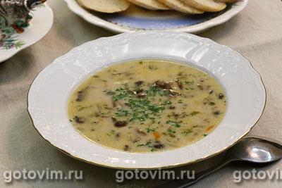 Суп из опят с плавленым сыром. Фотография рецепта